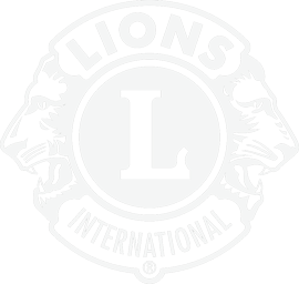 lions-logo-footer